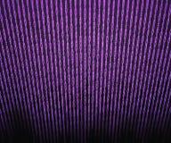 Лиловая бинарная предпосылка матрицы Стоковое Фото