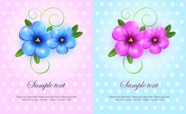Лиловые и голубые карточки цветков Стоковое Фото