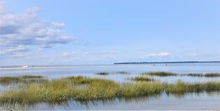 Лиман Лонг-Айленд Нью-Йорка приливный Стоковое фото RF