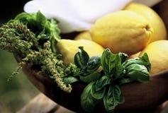 лимоны базилика Стоковое Фото
