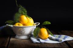 Лимоны в белом дуршлаге 2 Стоковое Изображение