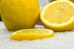 Лимоны в снеге стоковые фотографии rf