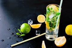Лимоны, известки и мята острословий коктеиля Mojito Стоковые Фотографии RF