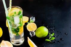 Лимоны, известки и мята острословий коктеиля Mojito Стоковое Фото