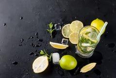 Лимоны, известки и мята острословий коктеиля Mojito Стоковые Изображения