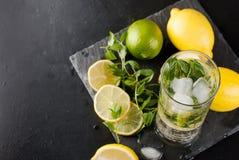 Лимоны, известки и мята острословий коктеиля Mojito Стоковая Фотография