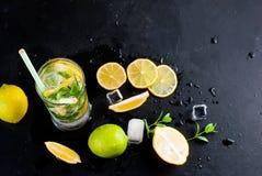Лимоны, известки и мята острословий коктеиля Mojito Стоковое Изображение
