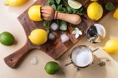 Лимоны, известки и мята Стоковая Фотография