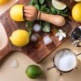 Лимоны, известки и мята Стоковое Изображение