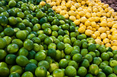 Лимоны и известки Стоковая Фотография RF