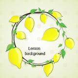 Лимоны, нарисованные вручную Эскиз вектора Стоковые Фото