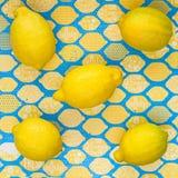 Лимоны на покрашенной сине-желтой предпосылке с надписями Стоковое Изображение