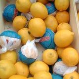 Лимоны проданные в рынке стоковое фото rf