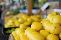 лимоны хуторянина выходят s вышед на рынок на рынок стоковые изображения