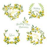 Лимоны, цветки, знамена листьев и бирки Флористический венок иллюстрация штока