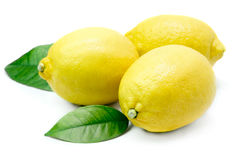 Лимоны Стоковая Фотография
