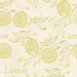 Лимон безшовный Стоковые Фото
