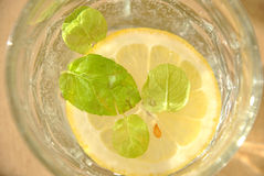 Лимон в воде стоковые изображения