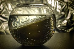 Лимон в пузырях Стоковое Изображение RF