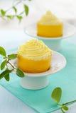лимон десерта стоковая фотография rf