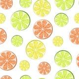 Лимон, известка, грейпфрут иллюстрация штока