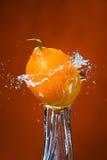 Лимон и выплеск воды на оранжевой предпосылке Стоковые Изображения RF