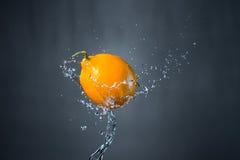 Лимон и выплеск воды на серой предпосылке Стоковая Фотография RF