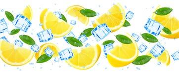 Лимон и лед Стоковые Изображения