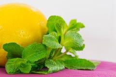 Лимон и мята Стоковые Фотографии RF