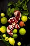 Лимон на ветви и известках прерванная граната На черной предпосылке Темное фото Падения воды плодоовощ влажный стоковые фото