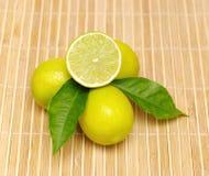 Лимон приносить с зеленым крупным планом листьев Стоковое Изображение RF