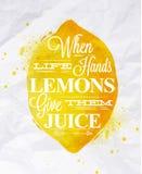 Лимон плодоовощ плаката Стоковые Изображения RF
