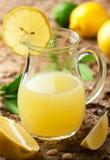 лимон сока Стоковая Фотография RF