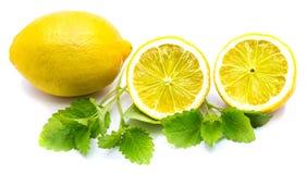 Лимон с Мелиссой изолировал Стоковые Изображения RF