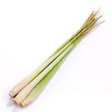 лимон травы стоковое изображение