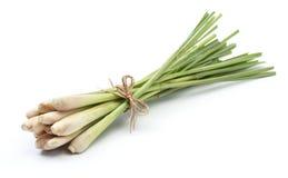 лимон травы Стоковые Фотографии RF