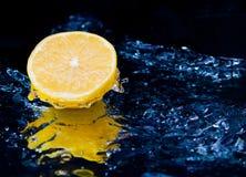 лимон Стоковое фото RF