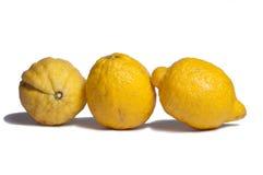 Лимон Стоковая Фотография RF