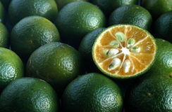 лимон calamansi Стоковые Изображения