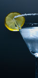 лимон martini Стоковое Фото