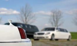 Лимузин простирания Хобот лимузина Роскошный белый лимузин Стоковое Изображение RF