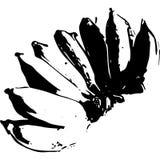 Линии банана черно-белые Стоковое Фото
