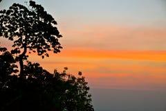 Линии неба Стоковая Фотография