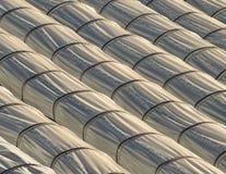 Линии парников тоннеля для земледелия Стоковые Фото