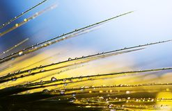 линии падений Стоковые Изображения RF
