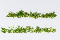 Линии различных трав Стоковые Фотографии RF