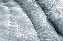 линии руки Стоковая Фотография RF