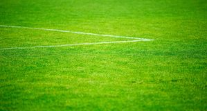 Линии травы и мела на конце-вверх футбольного поля Стоковое фото RF