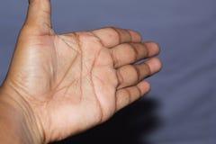 Линии человеческой левой ладони стоковая фотография