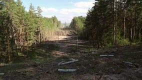 Линии электропередач в лесе видеоматериал